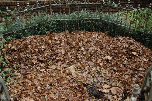 Leaves on top of a garden bed