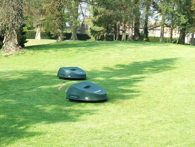 Robot lawn mowers mowing a lawn