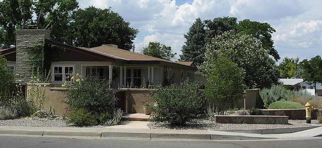 house with a wall in front and shrubs with gravel mulch