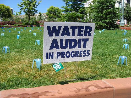 "Sign that says ""water audit in progress"" on a lawn with cups on it"